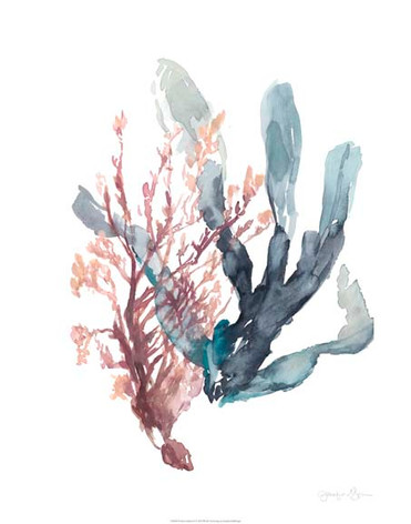 133865FN Sweet Seaweed I.jpg