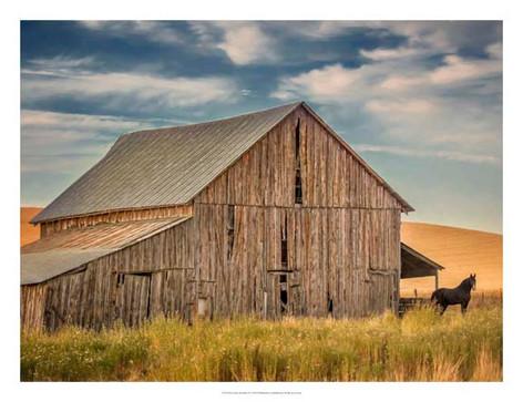 135572GG Farm & Field VI.jpg