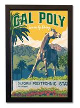 Cal+Poly+framed.jpg