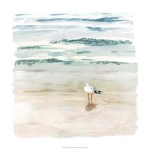 132872Z Seagull Cove II.jpg