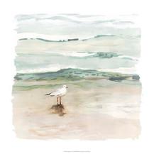 132871Z Seagull Cove I.jpg