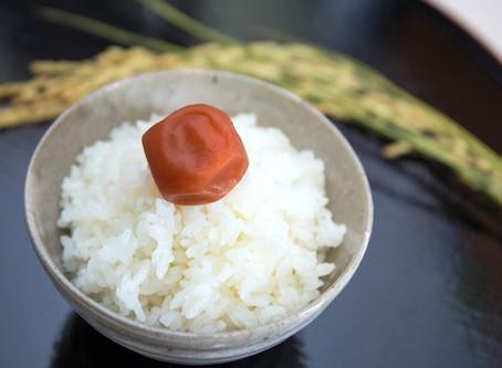 [J-Special] No Rice, No Life. 米食萬歲