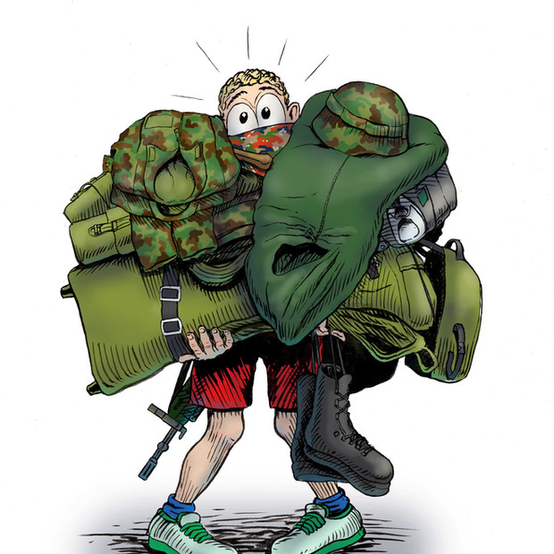 ER in 21 caricatures, Federal department of Defence, 2015