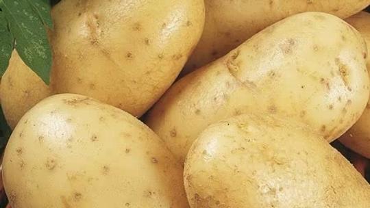 Large sack potatoes (Maris Piper) 25kg