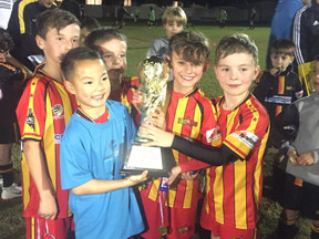 Under 8s Hold Mini World Cup