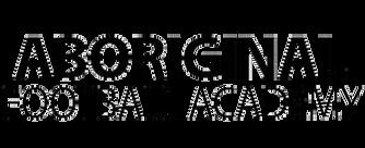 Aborginal Football Academy.png