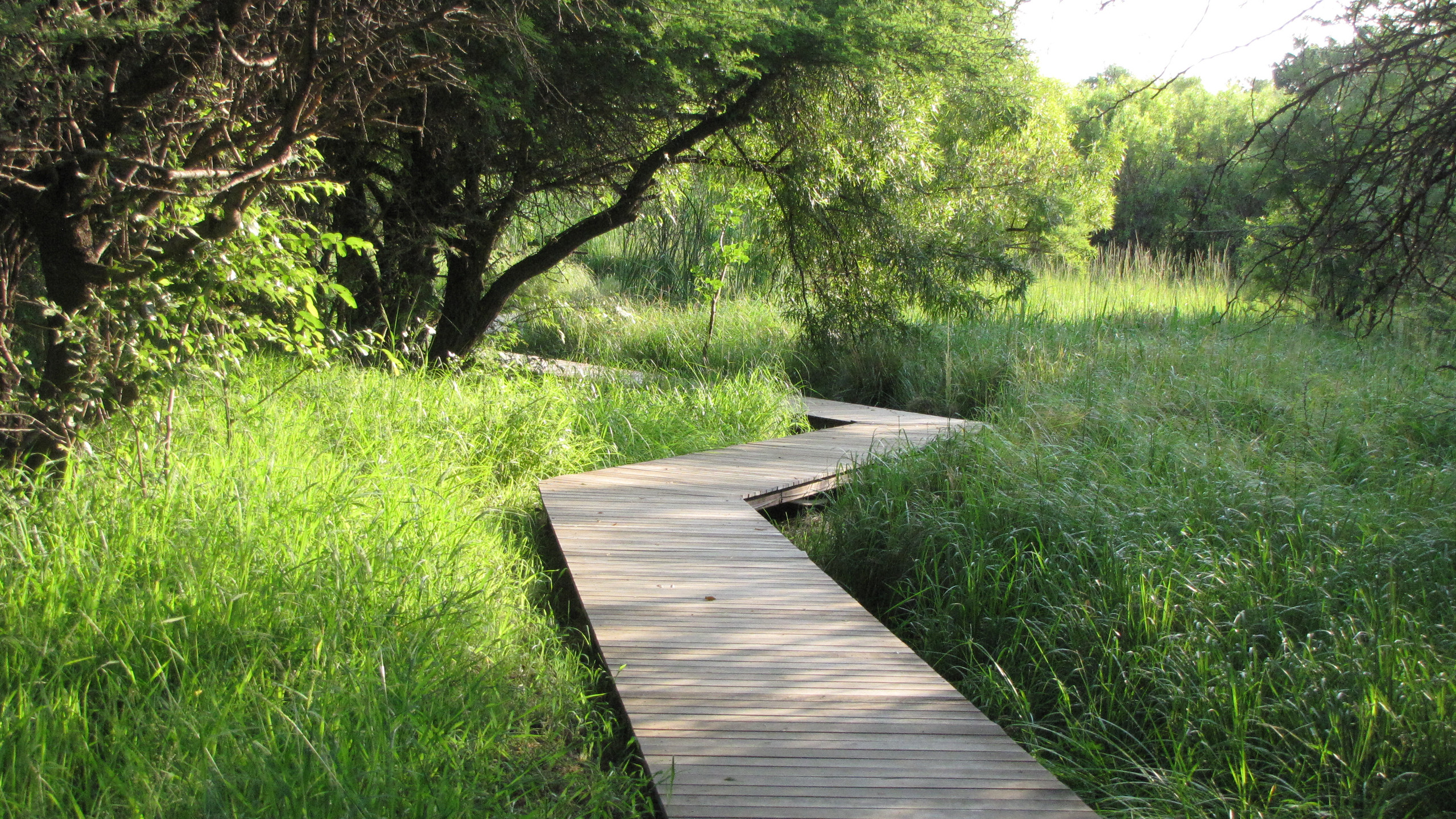 Walkway to Bliss Body Spa at Dikhololo resort, North West Province
