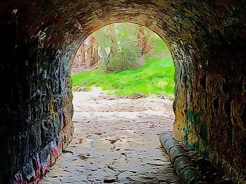 Garden Cave
