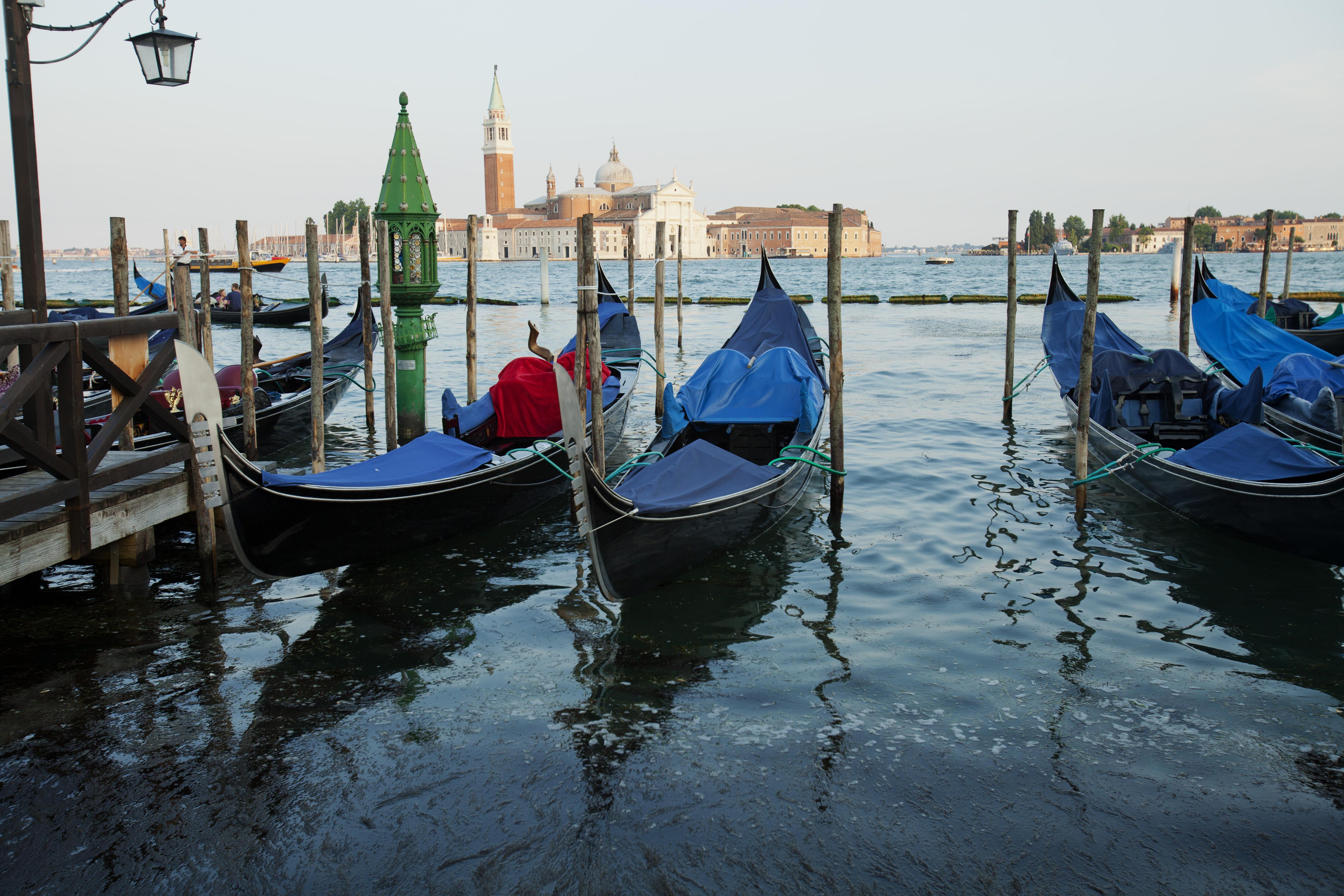 Venice. 2015