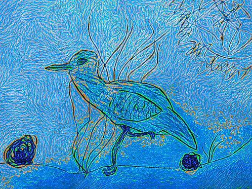 Blue Plover