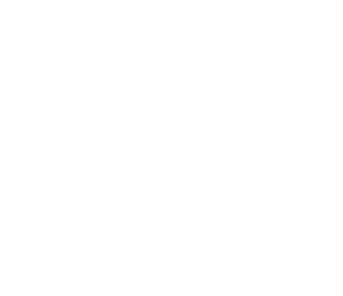 Waves-01.png