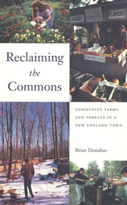 Reclaiming the Commons by Brian Donahue