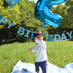 2nd birthday picnic party