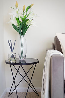 home stgaing property staging.JPG