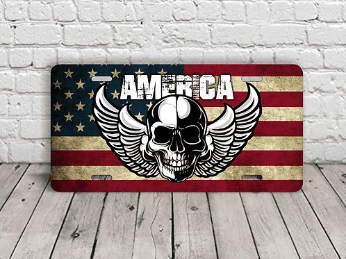 America Skull & Wings