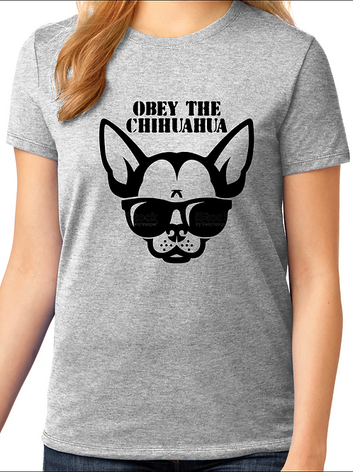 Obey the Chihuahua - Chihuahua