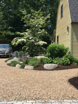 Entry & Drive Plantings