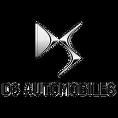 motori usati motore usato ds logo.png