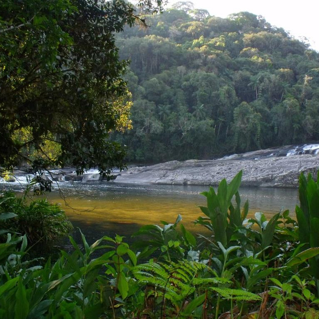 Cachoeira do Salto Grande Rio Paraibuna