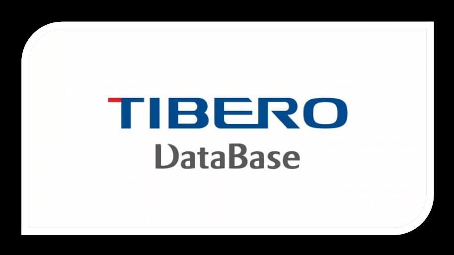 Tibero database from TmaxSoft