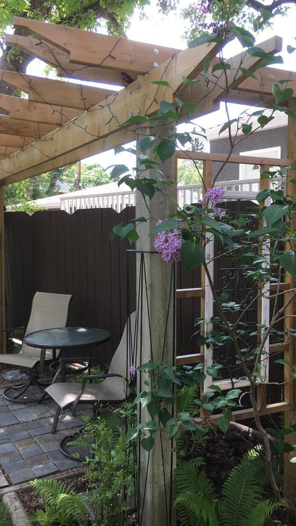 Backyard Meeting