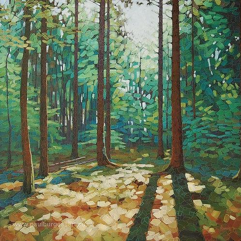 """Woodland Dawn 4 - 9"""" x 9"""""""