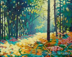 Forest Dawn 15