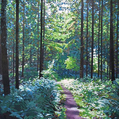 Path To Blaize Bailey Farm