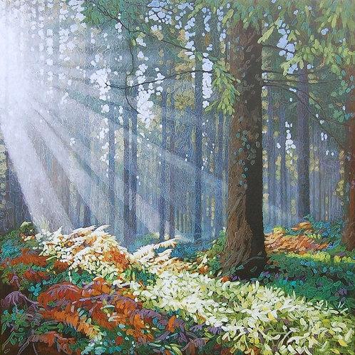 Forest Dawn 3