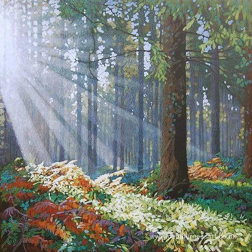 """Forest Dawn 3 - 9"""" x 9"""""""