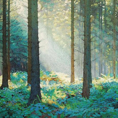 """Forest Dawn 4 - 9"""" x 9"""""""