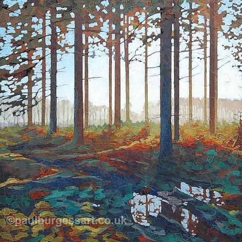 Dodmore Wood