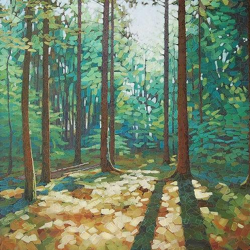 Woodland Dawn 4