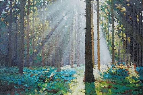 Forest Dawn 9