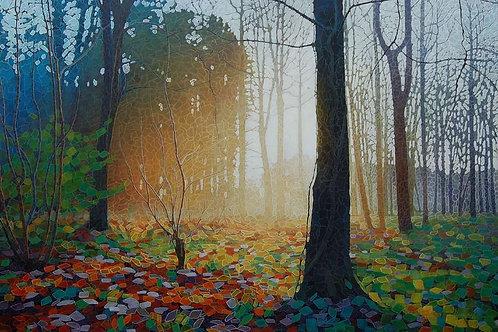 Forest Dawn 10