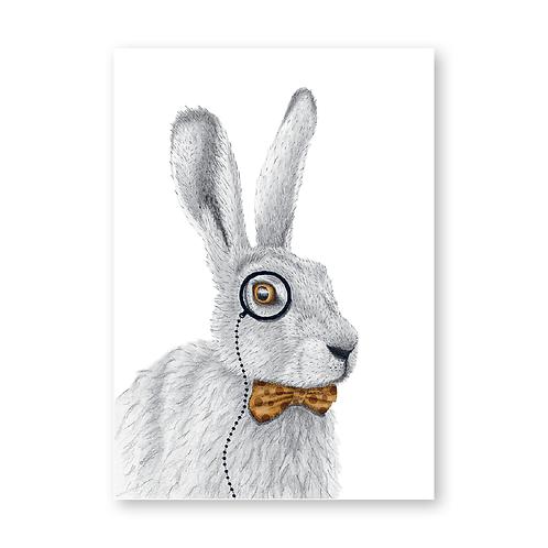 Monsieur Hare