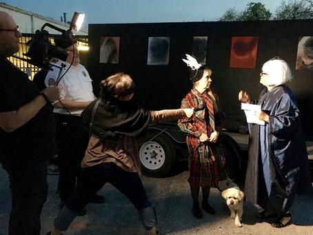 SNOUT: A Dog Show