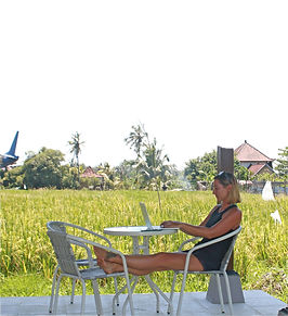 working online in the rice fields
