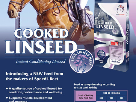 Cooked Linseed - NEW from the makers of Speedi-Beet!