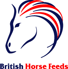 BHF(spot)logo.png