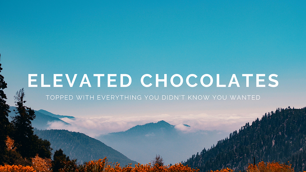 Elevated Chocolates website banner.png