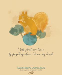 squirrelEtsy.jpg