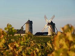 Moulins d'Ardenay