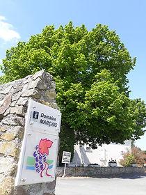Vigneron Indépendant Domaine Marçais