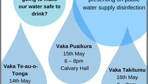 How can we make our public water supply safe to drink?