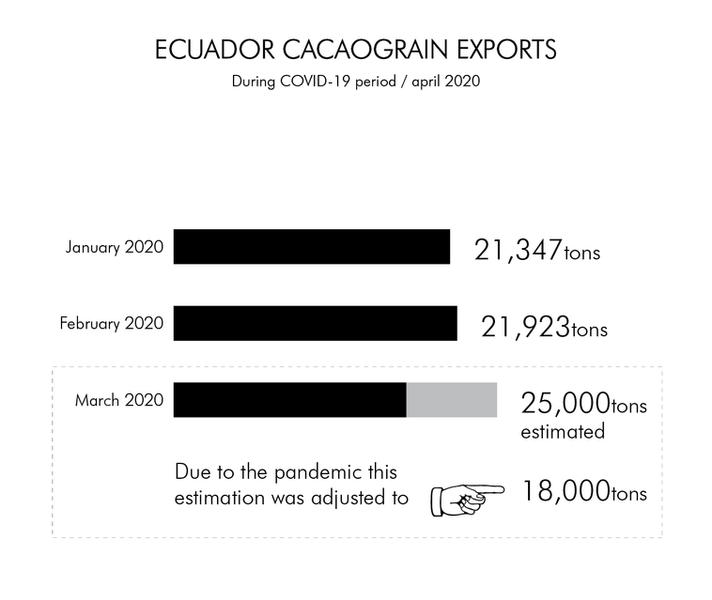 ECUADOR CACAO GRAIN EXPORTS