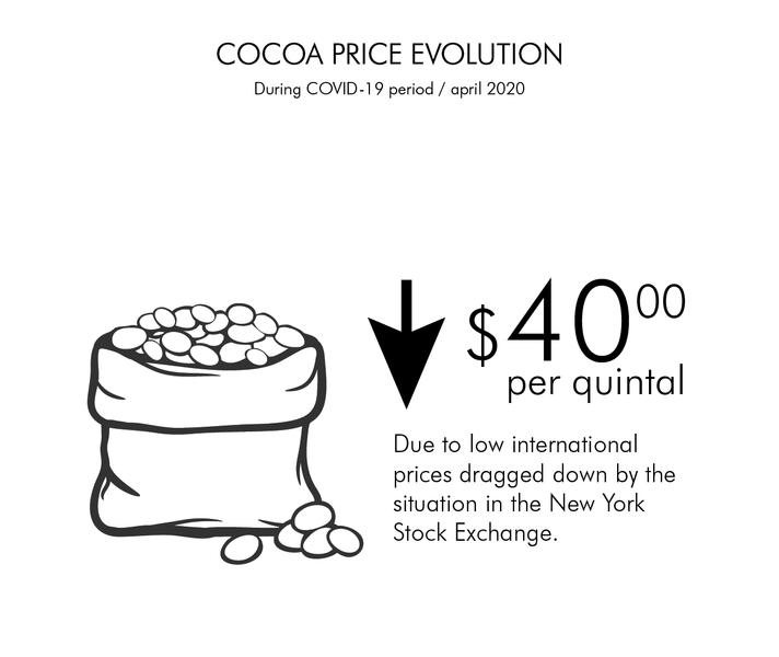 COCOA PRICE EVOLUTION