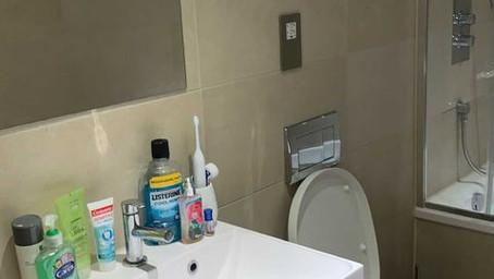 domestic general clean