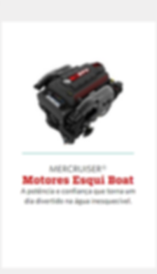 Motores de centro Mercury gasolina