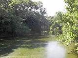 Fantasma Boat te leva para a conhecer a Reserva deTauá em Búzios